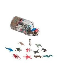 bote animales marinos
