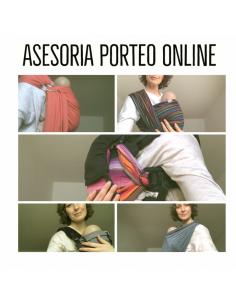 Asesoría Online Porteo