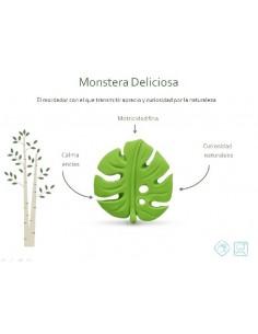 Mordedor Monstera deliciosa LANCO