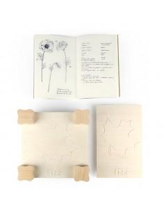 Prensa y herbario FIZZIDEAS