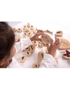 73410 Wooden minibeast