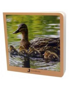 """Libro de fotografías """"Animales en Familia 1"""""""