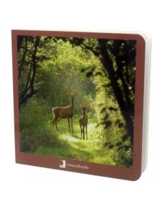 """Libro de fotografías """"Animales del Bosque"""" NOWORDBOOKS"""