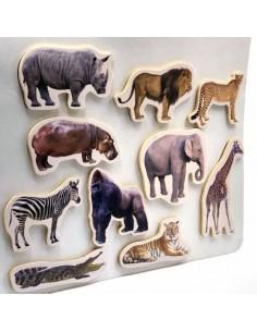 Animales Magnéticos Salvajes NOWORDBOOKS