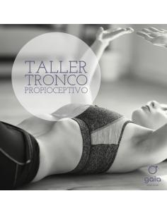 Taller Online de Iniciación al Tronco Propioceptivo