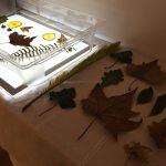 Recursos caseiros para mesa de luz
